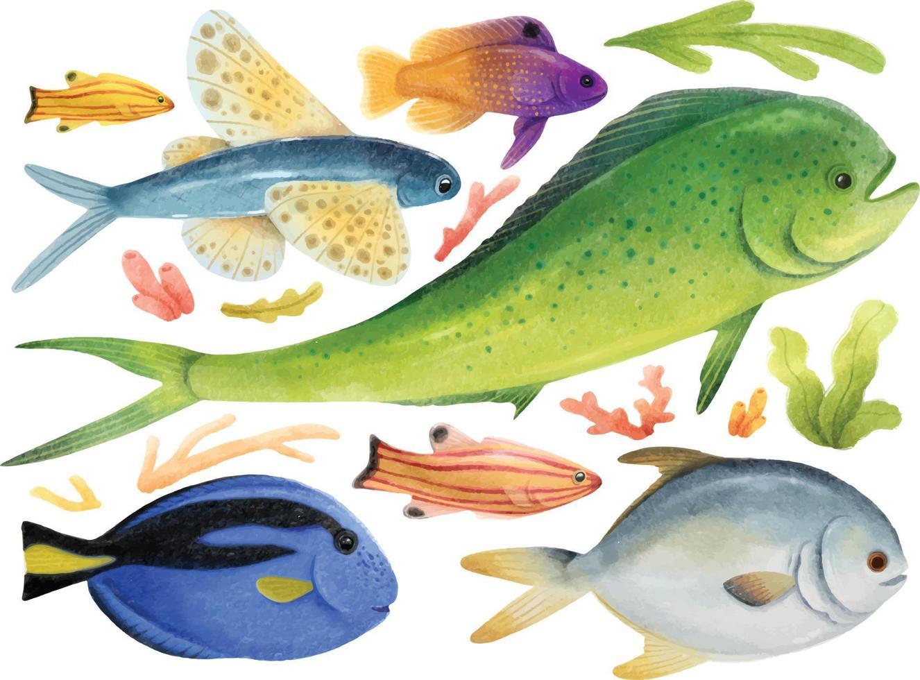 conjunto de peixes do mar em aquarela pintados à mão vetor