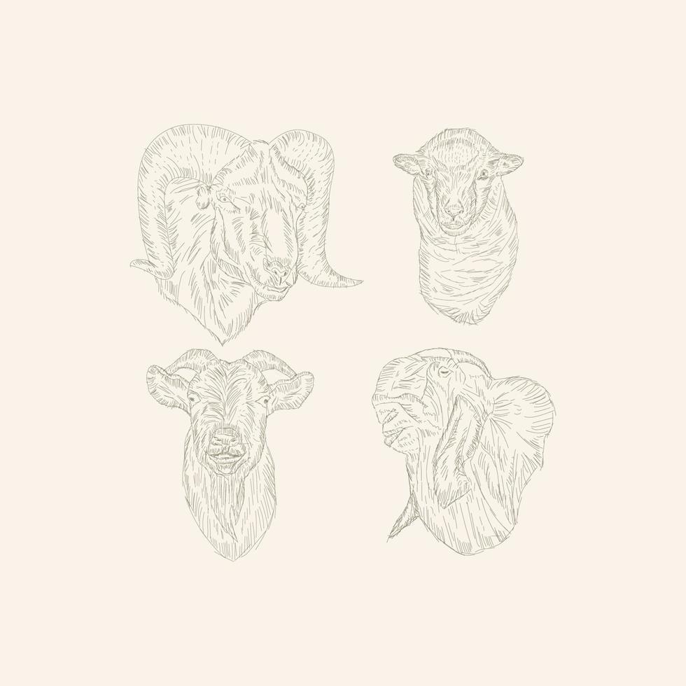 desenho vetorial cabeça de cabra vetor