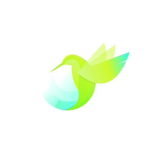 Ilustração de um beija-flor vetor