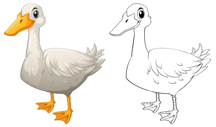 Esboço de doodle animal para pato vetor