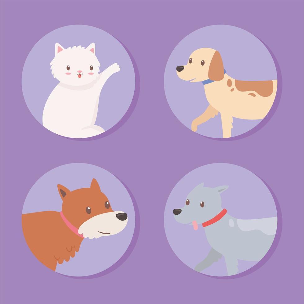 definir ícones animais de estimação vetor
