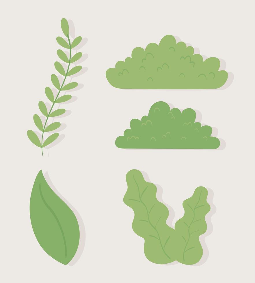 conjunto de folhagem de arbustos de folhas vetor