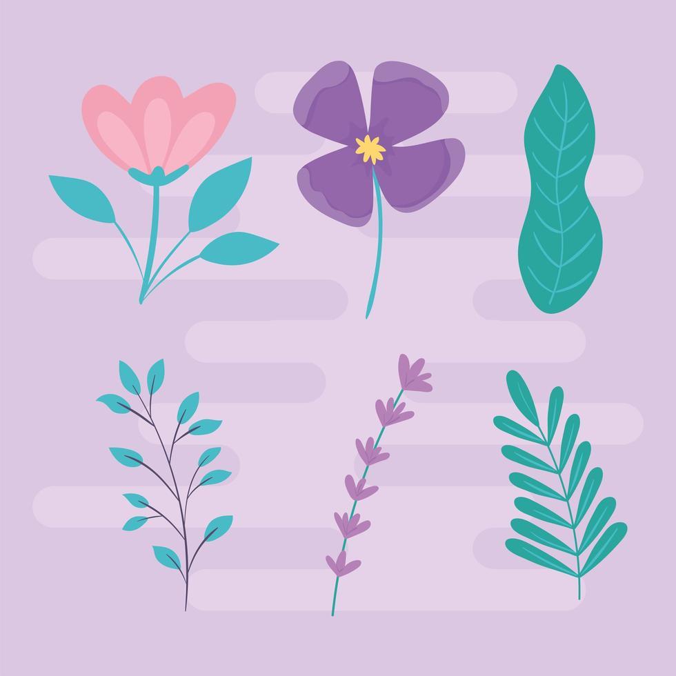 conjunto de folhas de flores vetor