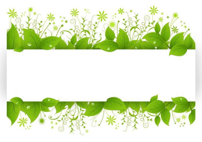 Pacote vetorial de folhas frutíferas vetor