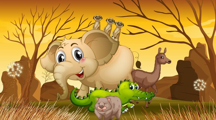 Animais selvagens em pé no campo vetor