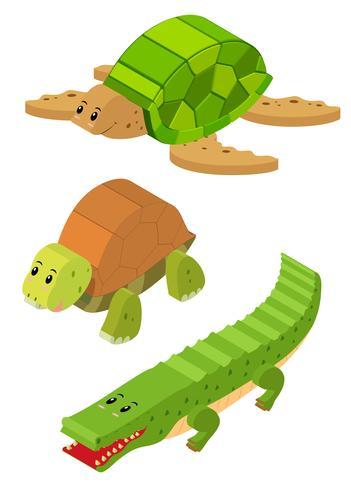 Design 3D para tartaruga e crocodilo vetor