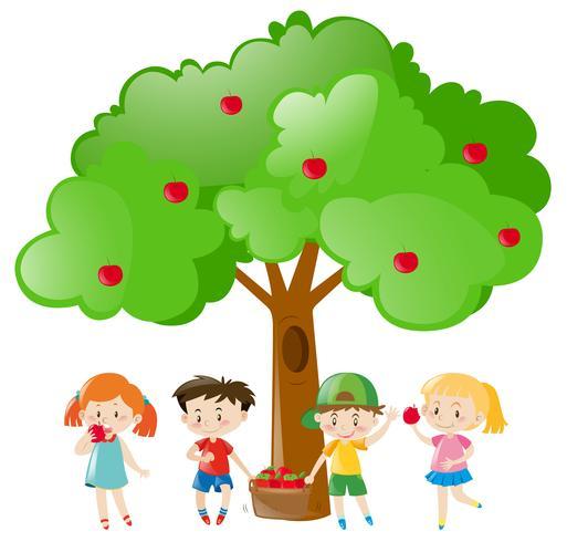 Crianças, colheita, maçãs, ligado, a, árvore vetor