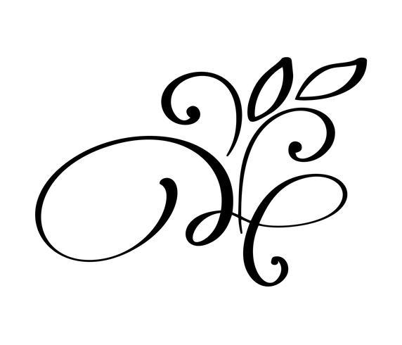 hand drawn flourish Elementos de caligrafia. Ilustração vetorial vetor
