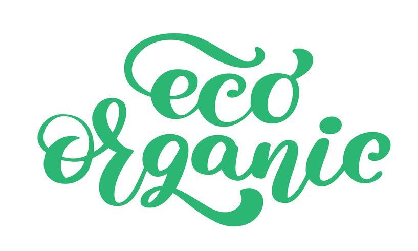 Eco Organic icon hand drawn calligpaphy isolado ilustração vetorial vetor