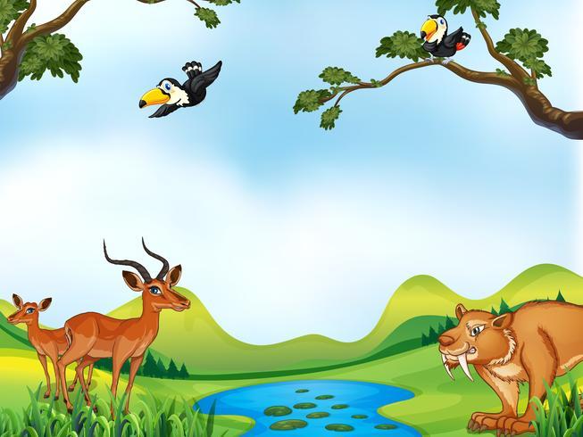 Animais e lagoa vetor