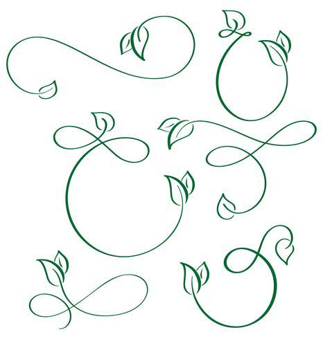 desenhador caligráfico elementos verde folha ícones vegan em fundo branco vetor