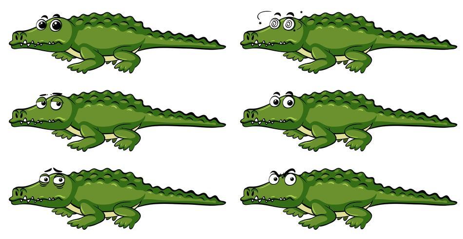 Crocodilo com emoções diferentes vetor