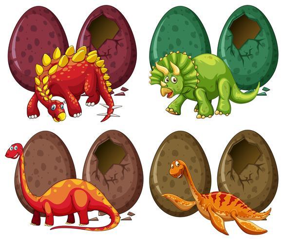 Quatro tipos de dinossauros e ovos vetor