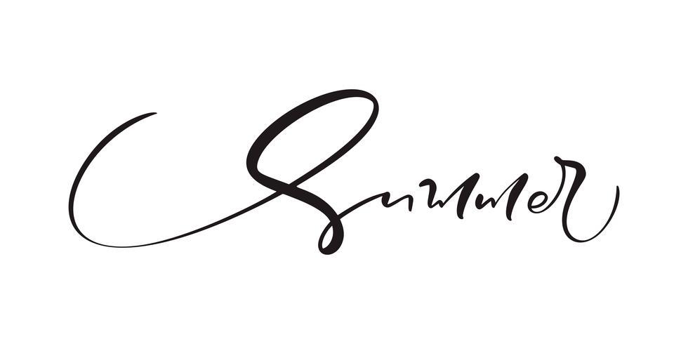 Mão de verão bonito desenhado letras texto de vetor de caligrafia. Logotipo ou etiqueta do projeto da ilustração das citações do divertimento. Cartaz de tipografia inspiradora, banner