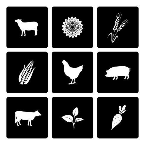 Conjunto de ícones rurais vetor