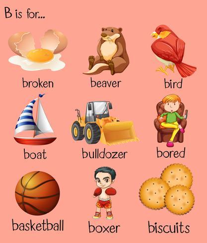Palavras diferentes começam com a letra B vetor