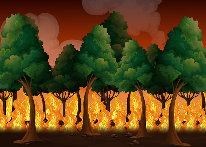 Uma floresta com desastre de incêndios florestais vetor