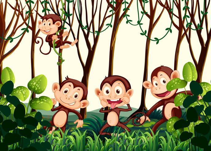 Macaco morando na selva vetor