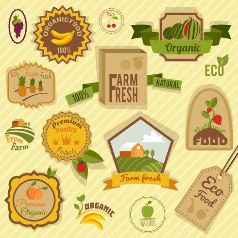Frutas de rótulos ecológicos vetor