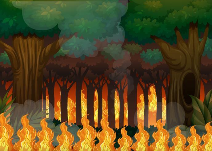 Um incêndio florestal na floresta vetor