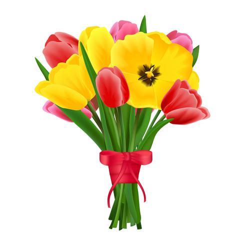 Buquê de flores de tulipa vetor
