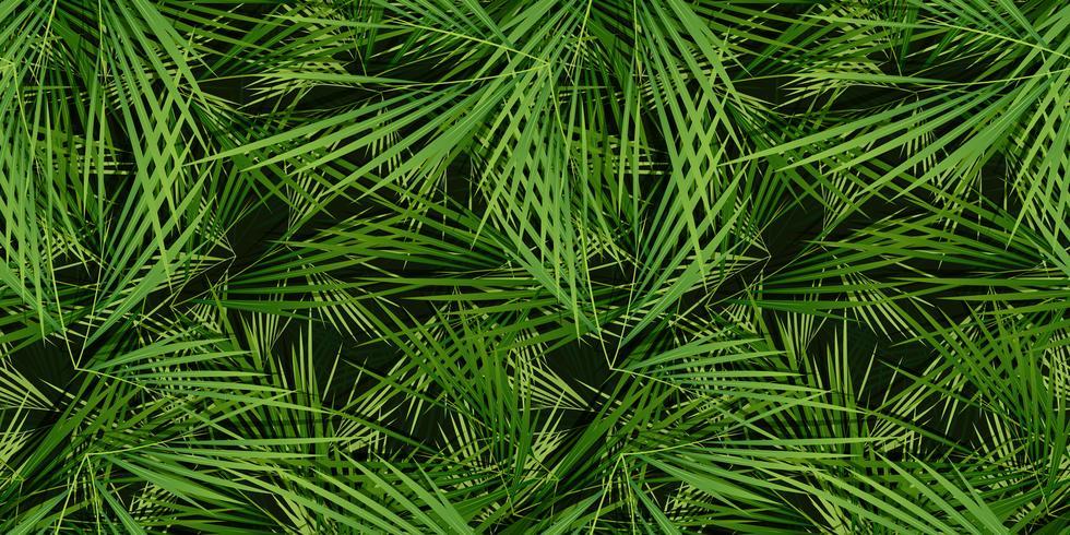 Fundo de folhas de palmeiras sem emenda vetor