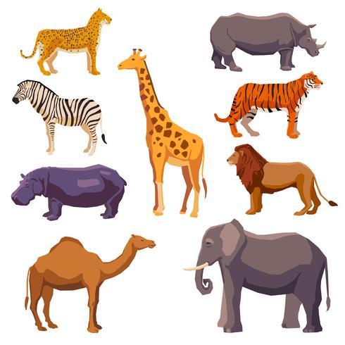 Conjunto decorativo animal de África vetor