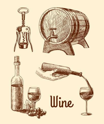 Esboço decorativo de vinho vetor