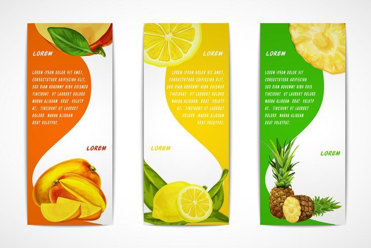 Conjunto de banner vertical de frutas tropicais vetor