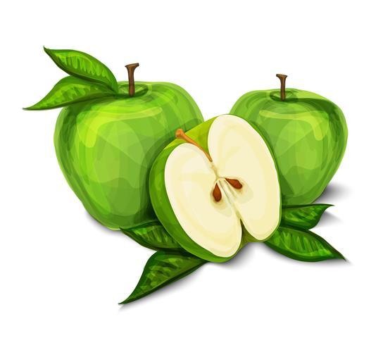 Fruta da maçã orgânica natural verde vetor