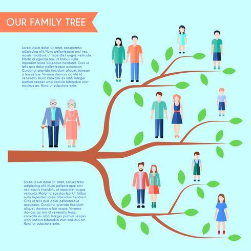 Cartaz liso da árvore genealógica vetor