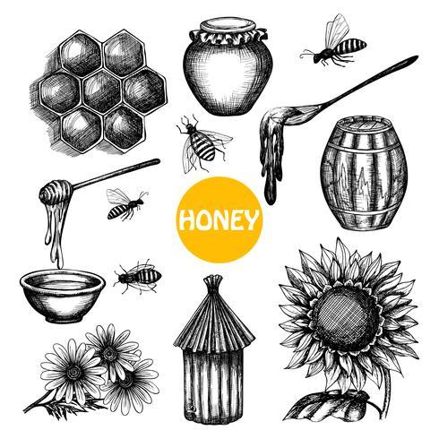 Conjunto de mel doodle desenhado de mão negra vetor