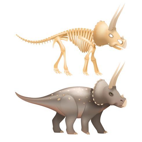 Arte de dinossauro Triceratops com esqueleto vetor