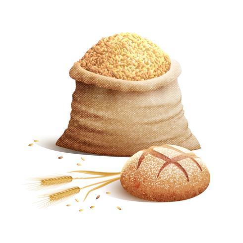 Pão e grão 3d conceito vetor