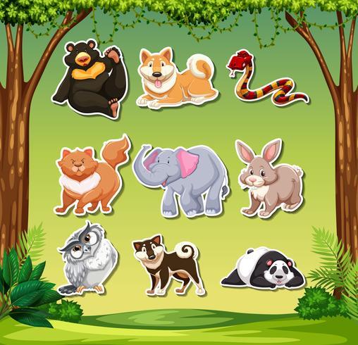 Conjunto de adesivos animais vetor