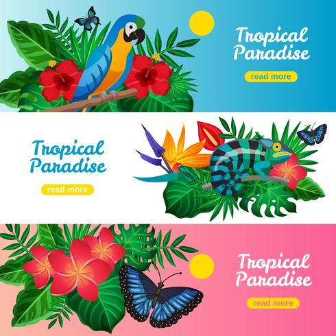 Conjunto de Banner Horizontal Tropical vetor