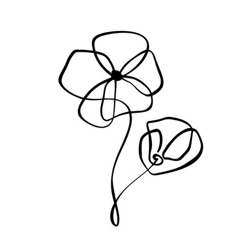Linha contínua mão desenho caligráfico vector flor conceito logotipo florista. Elemento de design floral escandinavo Primavera no estilo minimalista. Preto e branco