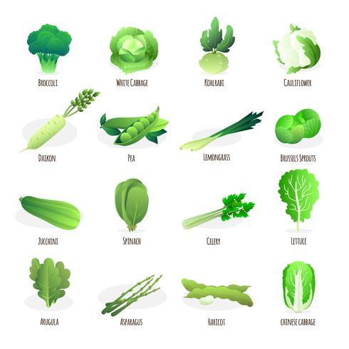Coleção de ícones plana de vegetais verdes vetor