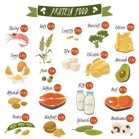 Conjunto de ícones plana de alimentos ricos em proteínas vetor