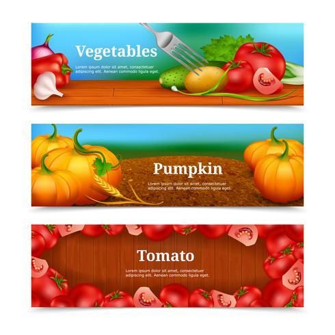Conjunto de Banners horizontais de legumes vetor