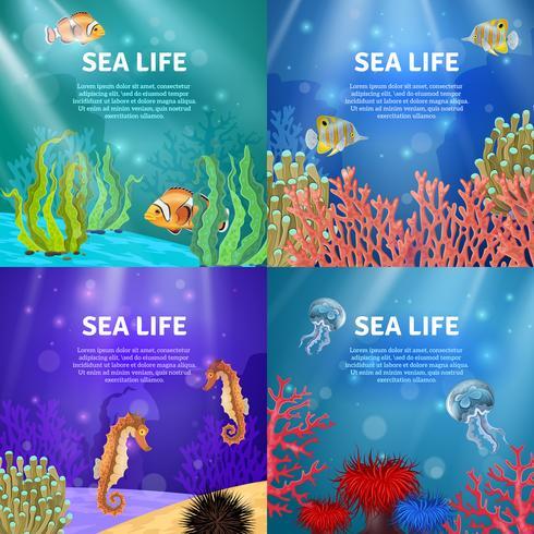 Conjunto de paisagem subaquática vetor