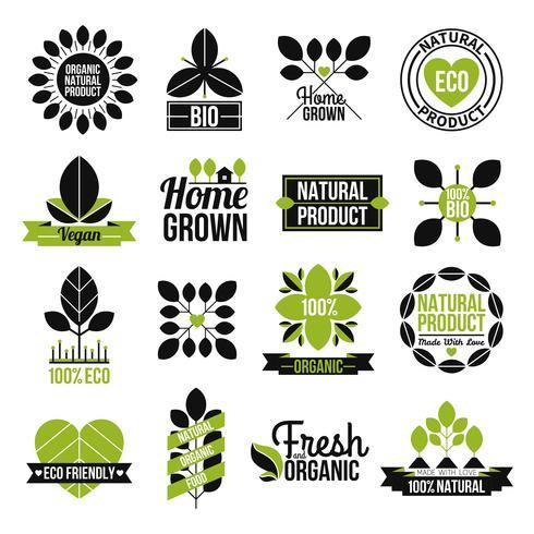 Conjunto de rótulo de produto natural orgânico vetor