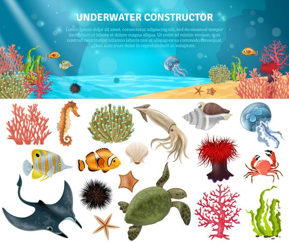 Conjunto de ícones isolados de vida marinha Construtor vetor