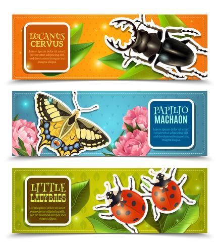 Conjunto de Banners de insetos vetor