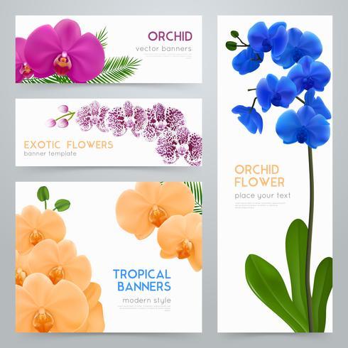 Conjunto de banners realista de orquídeas desabrochando vetor