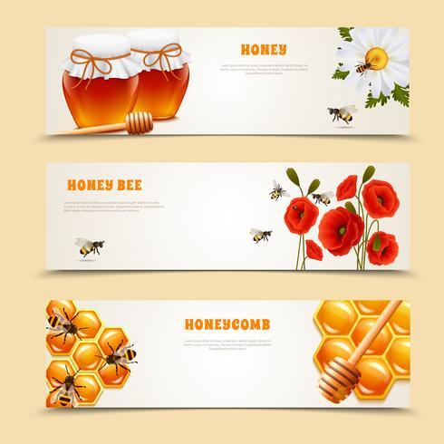 Conjunto de Banner de três mel vetor