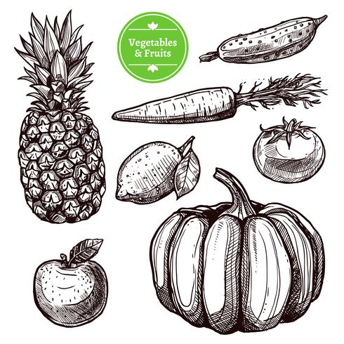 Conjunto De Legumes E Frutas vetor