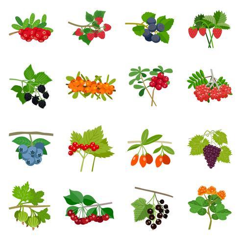 Conjunto de ícones coloridos de bagas vetor