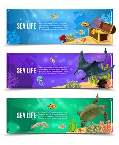 Conjunto de Banner de vida marinha vetor