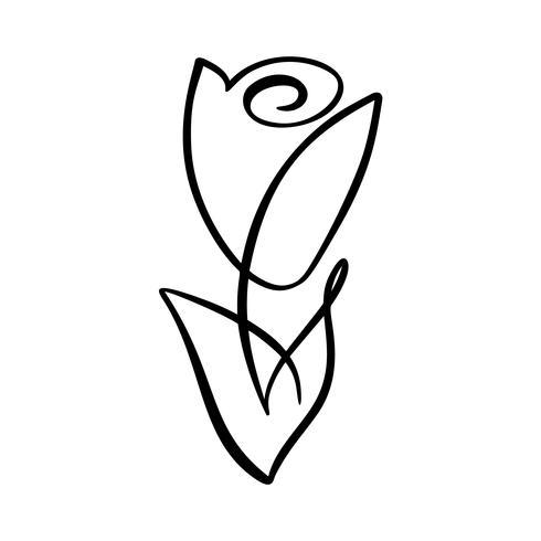 Conceito de flor rosa. Mão de linha contínua, desenho de logotipo de vetor caligráfico. Elemento de design floral escandinavo Primavera no estilo minimalista. Preto e branco